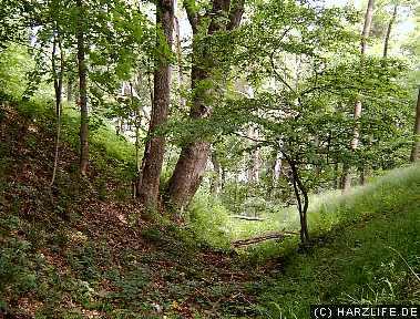 Burggraben der Güntersburg